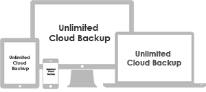 Flexible Backup for your Diverse Environment